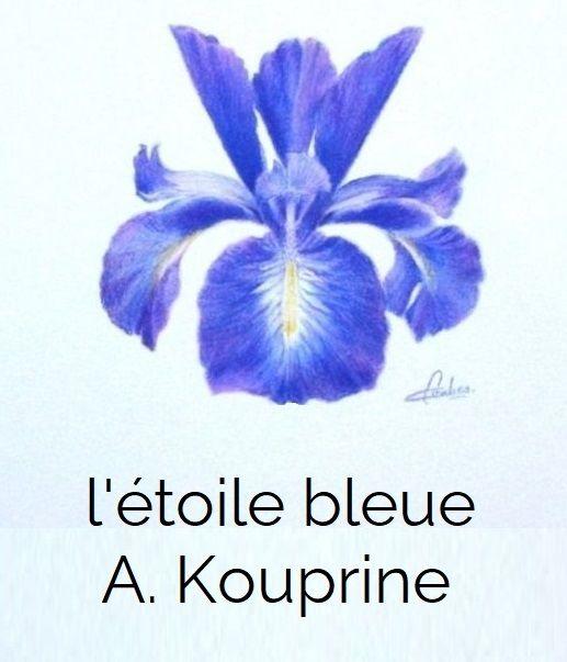 Petites nouvelles russes - L'étoile bleue - Alexandre Kouprine